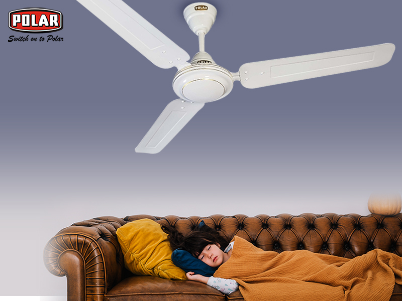 Look for the Best Quality Ceiling Fans and Window Fans