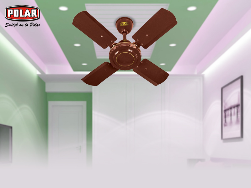 Cool Your Space & Add Style to Your Room with Modern Ceiling Fans