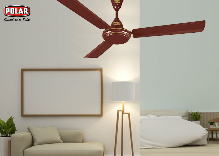 Buy Ceiling Fan