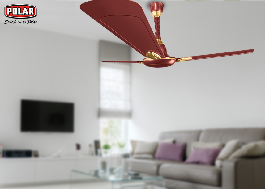 Get Answers of Some Faqs About Ceiling Fans for Your Home