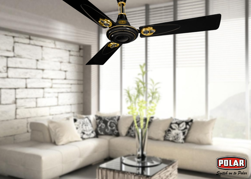 Get Professional Installation and Fast Ceiling Fan Service from Polar
