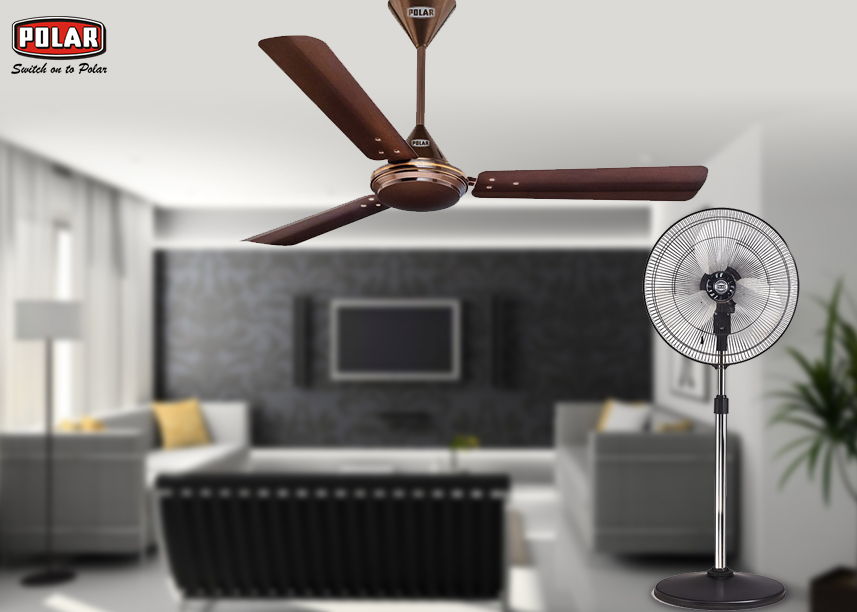 buy polar fan online