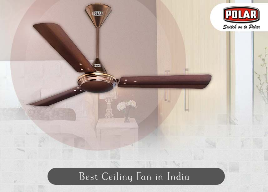 Best 10 Ceiling Fans