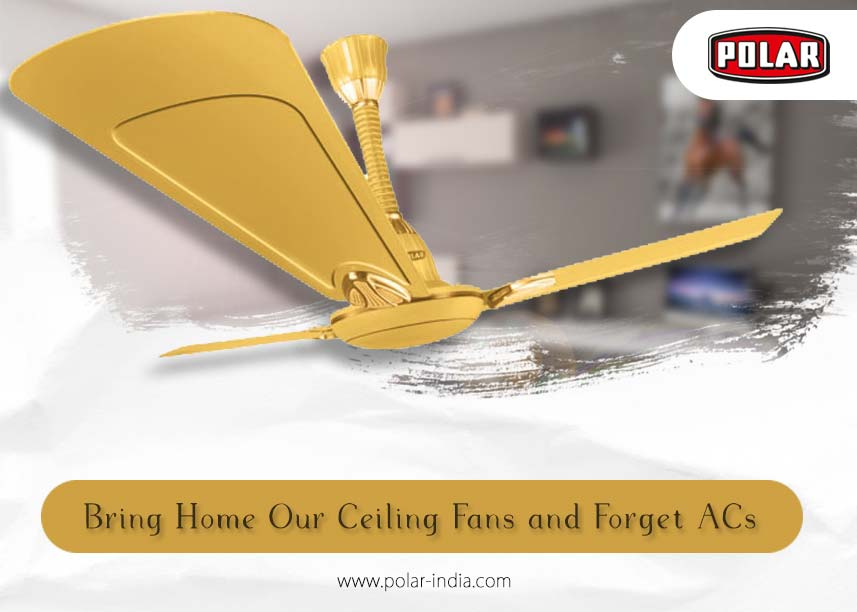 Low-Cost Ceiling Fans