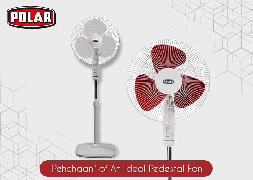 best Pedestal Fan