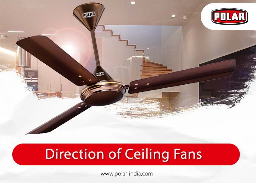 Choose The Right Direction Of Ceiling Fans For Different Seasons