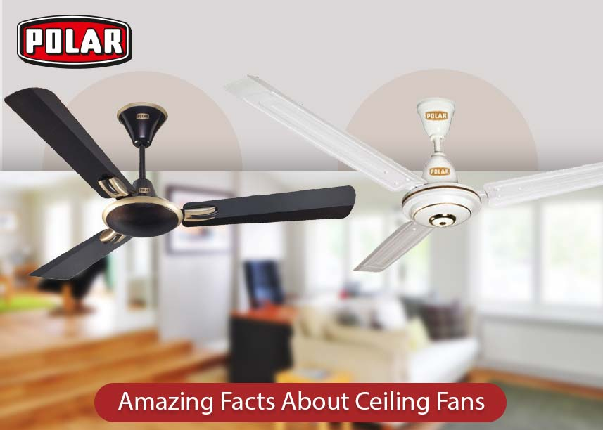 High-Speed Ceiling Fan