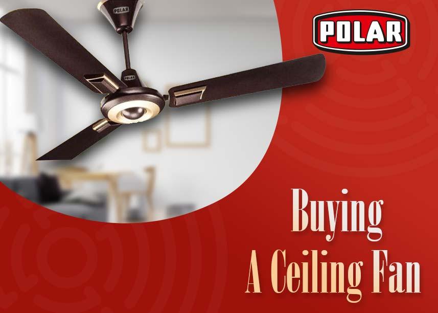 decorative ceiling fans