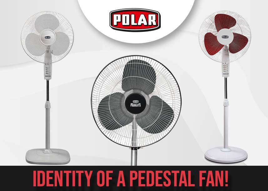 Best Pedestal Fans- PolarIndia