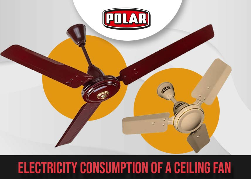 Ceiling Fan- polarindia