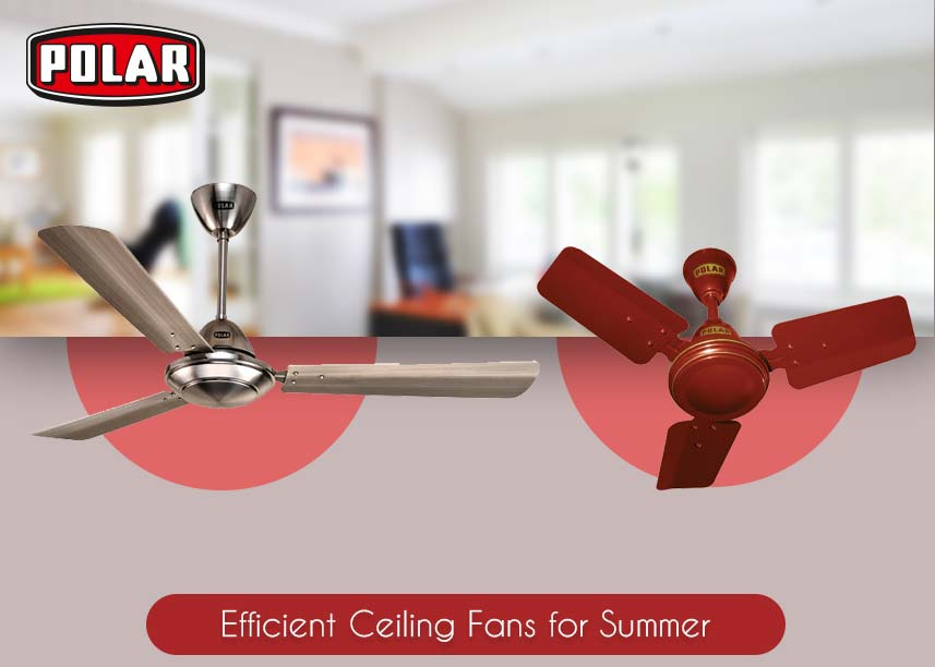 Low-Cost Ceiling Fans - polarindia