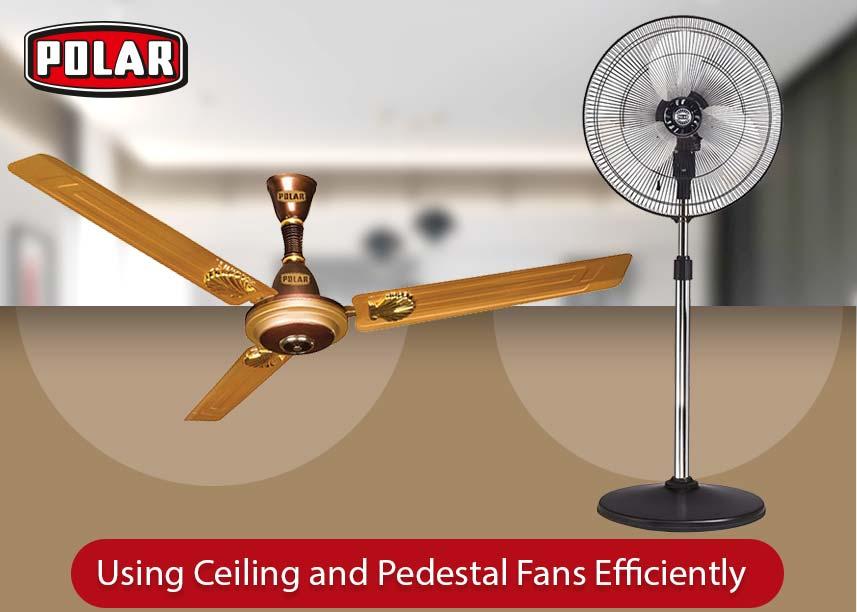 Ceiling Fans & Pedestal Fans- polarindia