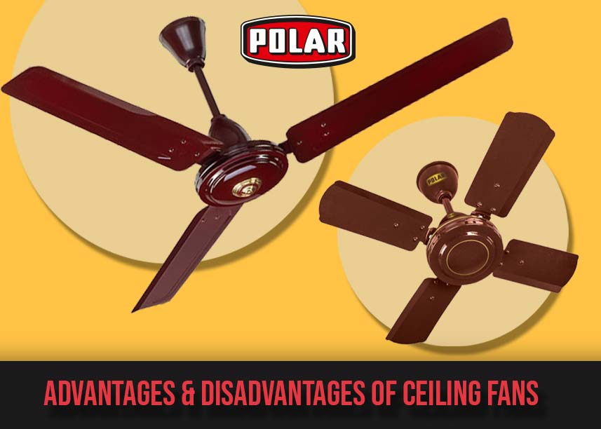 Polar electric Fans