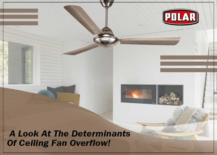 Polar Fans