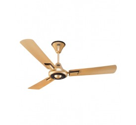 Polar Boxster Fan in Golden Dune - Metallic Brown