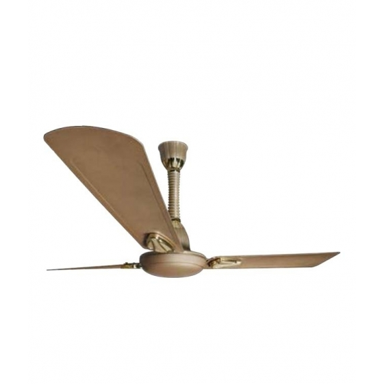 Polar Winaire ++ Fan in Husky Gold