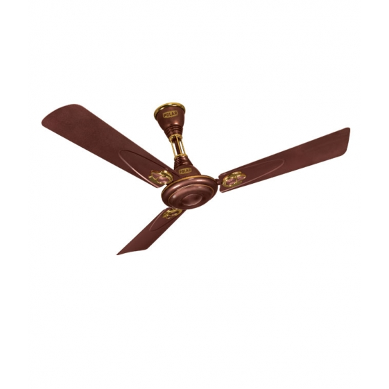Polar Wintop Fan in Mystique Brown