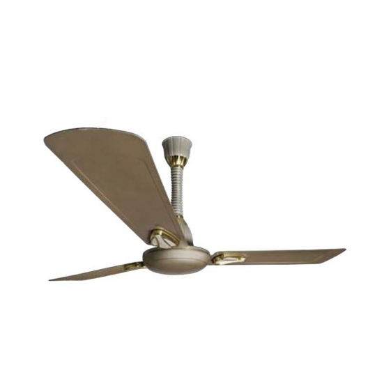 Polar Winaire ++ Fan in Royal Champagne